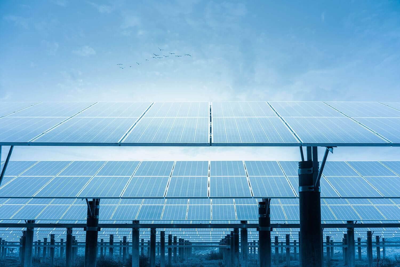 Latest Solar News Halcol Energy